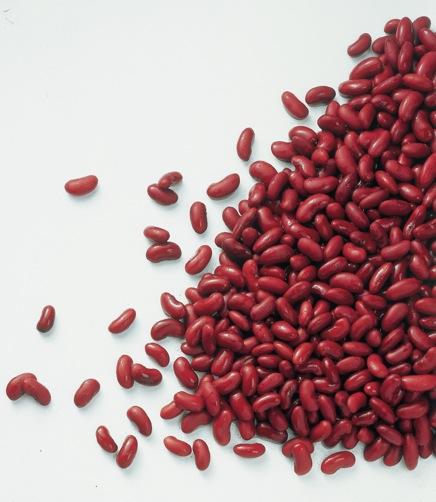 Kidneybonen (2.5kg) (kant-en-klaar)-0