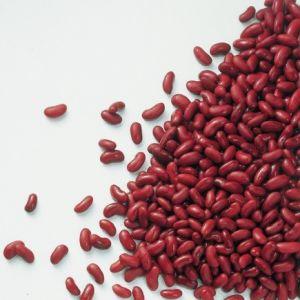 Kidneybonen (2.5kg) (kant-en-klaar)-2205