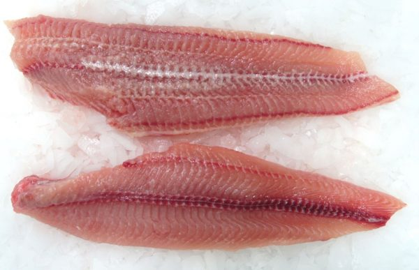 Hollandse Meerval 1kg (900gr netto) (rauw) (catfish)-3256